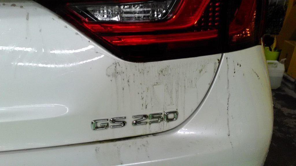 レクサスコーティング洗車